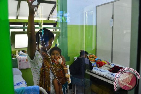 706 kasus DBD di Padang hingga Agustus, 9 penderita meninggal dunia