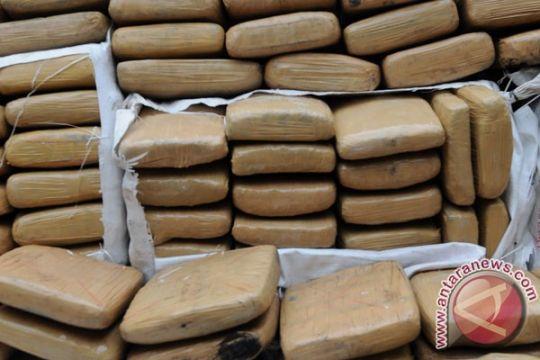 Ganja asal PNG diamankan di Pos Skamto