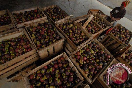 China izinkan lagi Indonesia ekspor manggis