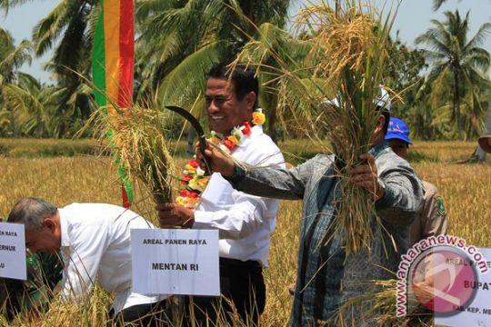 Riau dilematis hadapi ketahanan pangan (2)