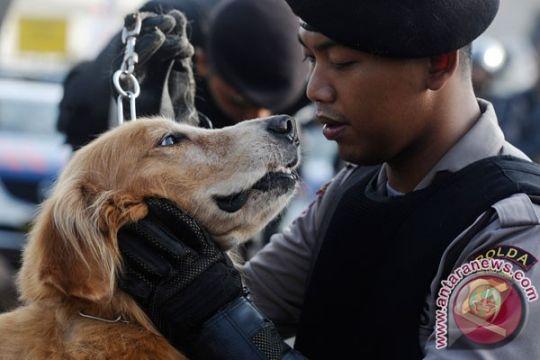 "Anjing ""Tika"" siap amankan stasiun Yogyakarta"