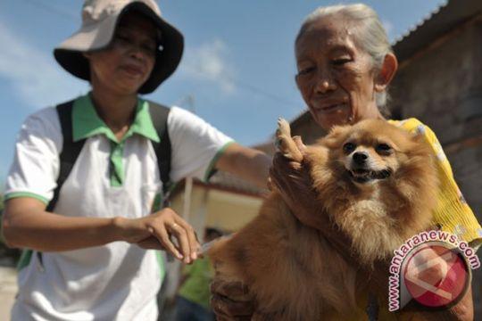 Kalbar-Sarawak gelar vaksinasi massal rabies di Entikong