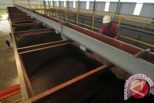 Pekanbaru tawarkan investasi pembangunan pabrik sawit Rp28 triliun