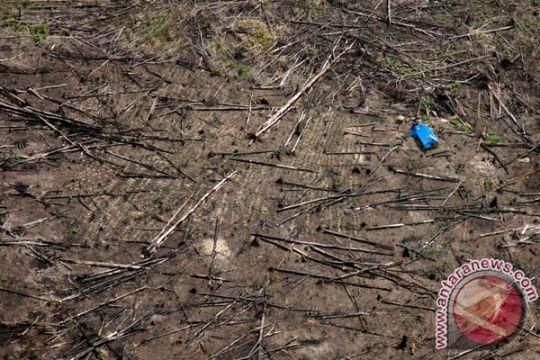 Tim gabungan sita ekskavator perambah hutan Tesso Nilo