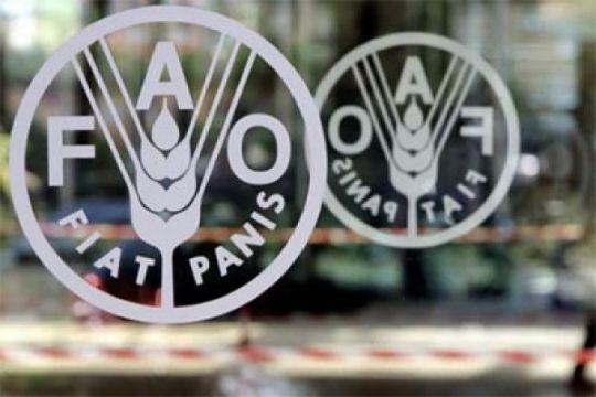 Harga pangan dunia meningkat pada Juli, memperpanjang lambungan