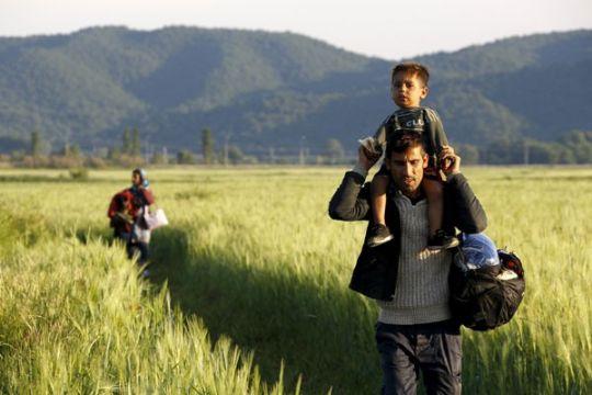 8.000 migran masuki Bosnia-Herzegovina sepanjang tahun ini