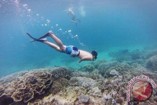Turis Jepang tewas saat snorkeling di Australia