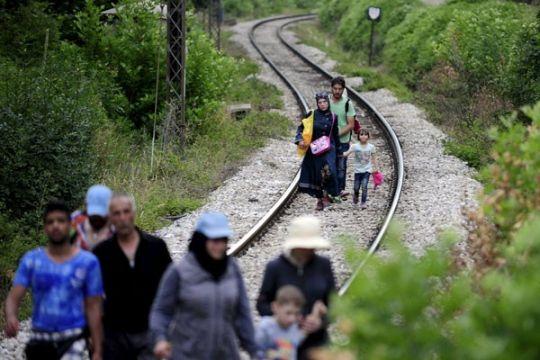 Ratusan migran nekad masuk jalan tol Hungaria