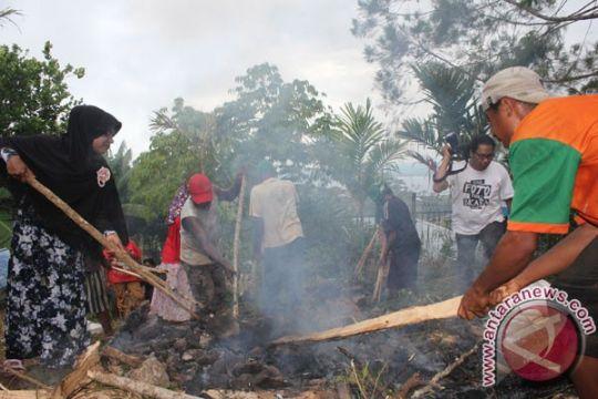 Muslim Wamena gelar bakar batu rayakan Idul Adha