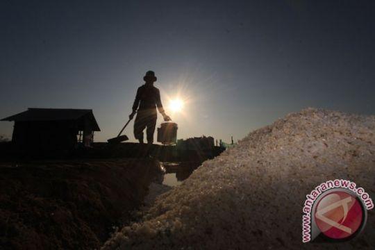 Impor garam sesuai kebutuhan industri