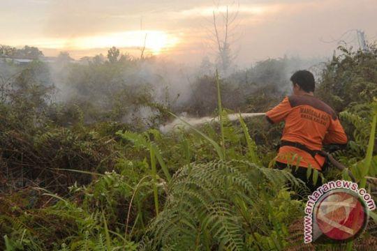 Rektor, mahasiswa, karyawan UMP padamkan kebakaran lahan gambut