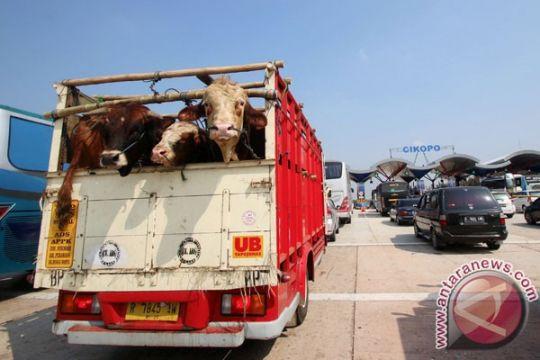 Arus balik jalan arteri Karawang macet