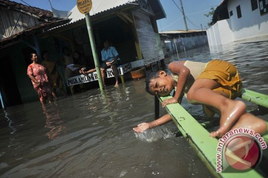 Kota Pekalongan banjir, seraturan rumah tergenang hingga 1 meter