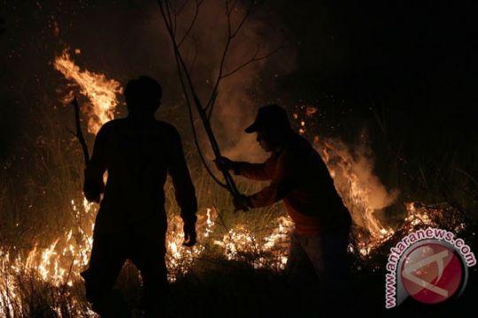 Hutan pendidikan milik IPB di Sukabumi terbakar