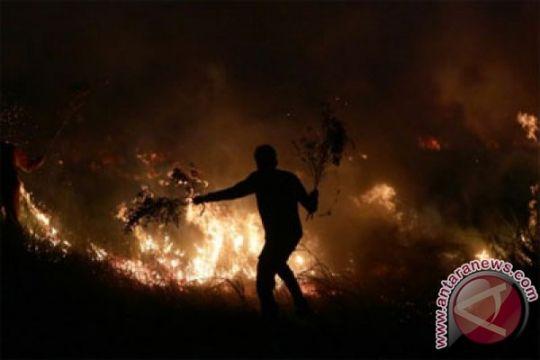 Hutan lereng Gunung Sumbing terbakar