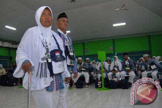 Jemaah haji diimbau tidak berfoto dengan unta