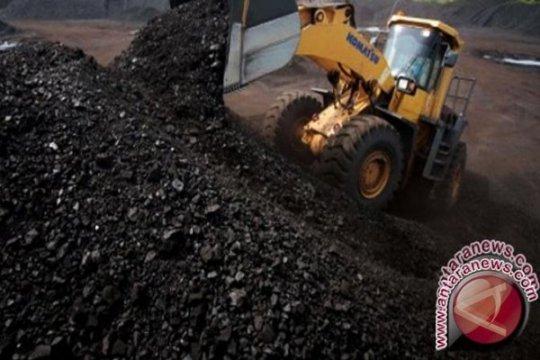 Jejak perusahaan tambang milik Heru Hidayat yang akan dikelola PTBA