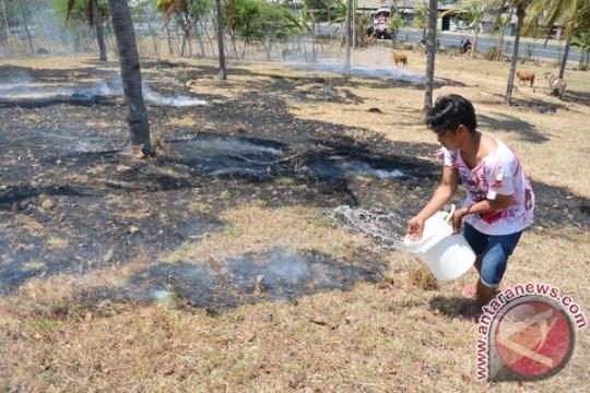 Ilalang kering ikut terbakar di Lhokseumawe Aceh