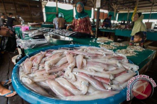 Natuna dinilai layak jadi percontohan industri perikanan nasional
