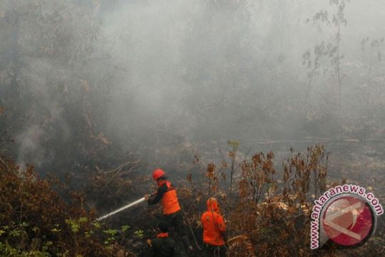 Polres Ketapang tangani laporan pidana kebakaran lahan