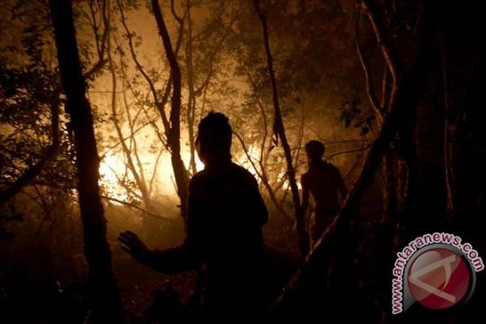 Karena asap, pendapatan hotel Riau turun 42 persen
