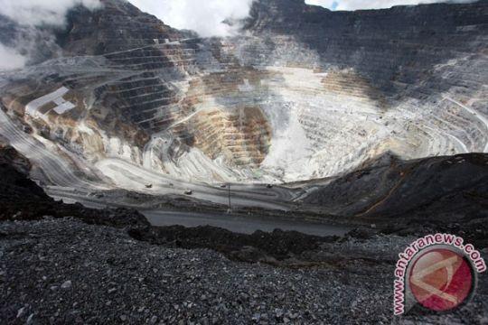 Relaksasi ekspor mineral mentah diputuskan Presiden Selasa