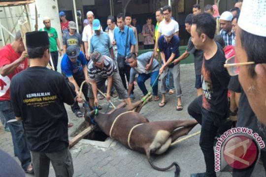 Pemkot Depok lakukan sosialisasi penyelenggaraan hewan kurban