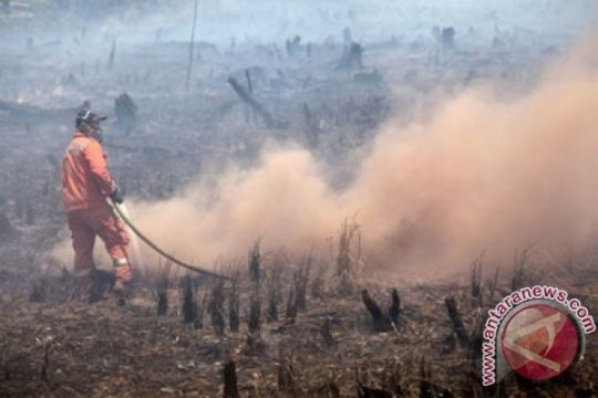 Pemadam kebakaran lahan dapat penghargaan di Hari Pahlawan