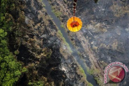 BMKG: 12 titik panas terdeteksi di Riau