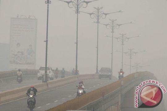 BMKG belum lihat dampak kebakaran hutan terhadap iklim Indonesia