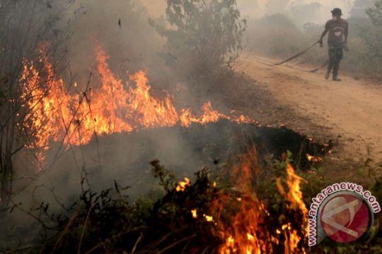 BMKG deteksi tiga titik api di Nunukan