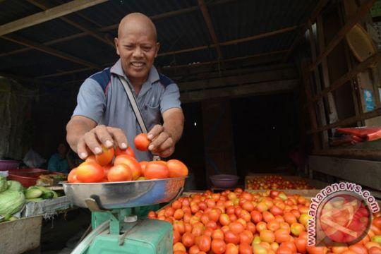 Harga tomat di Sorong melonjak jadi Rp35.000