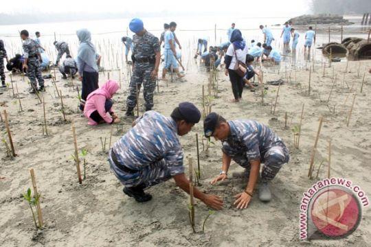 Mahasiswa Bengkulu pelajari fungsi ekosistem mangrove