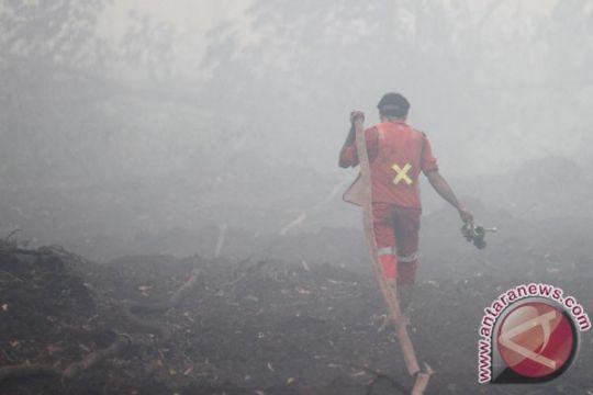 BENCANA ASAP - Bantuan asing pemadaman api hanya efektif pada titik tertentu