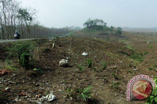 Ratusan hektar kawasan hutan di Minahasa Tenggara direboisasi