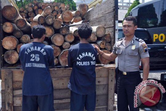 Polisi Narmada amankan puluhan balok kayu