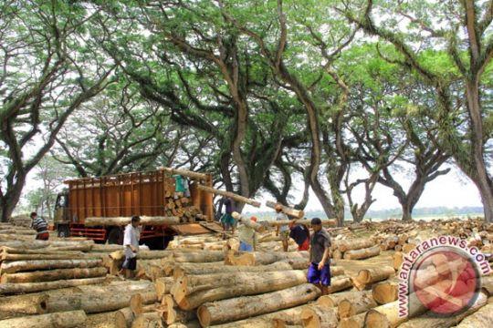 KLHK kembangkan sistem informasi pengelolaan hutan