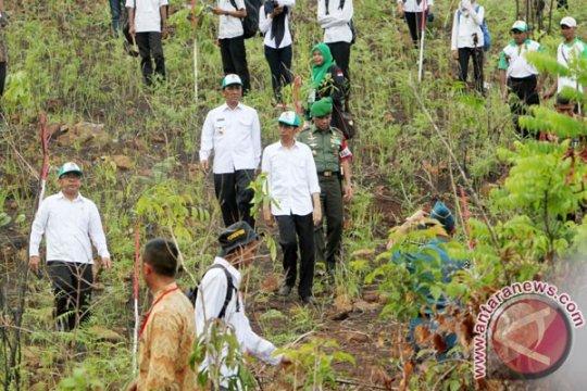 Kalsel tutup dua Taman Hutan Rakyat