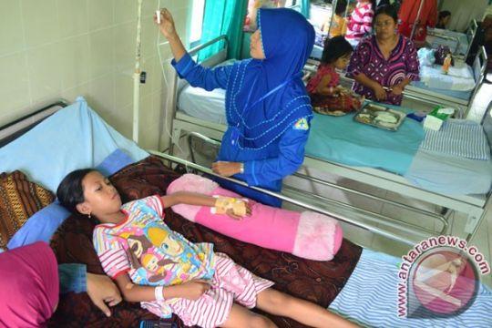 Penderita DBD di Lebak tembus 590 orang, empat meninggal dunia