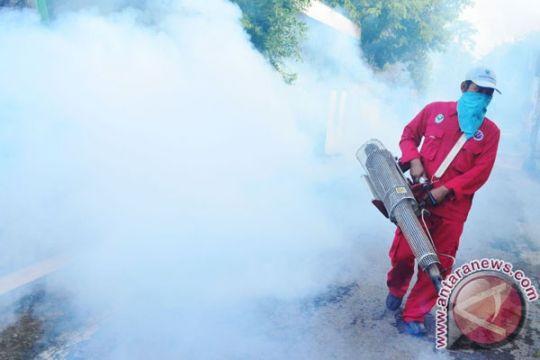 Kupang rancang aturan pemberantasan nyamuk