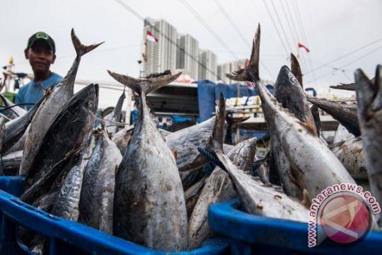 Sesko TNI AL gelar penelitian potensi maritim di Lhokseumawe