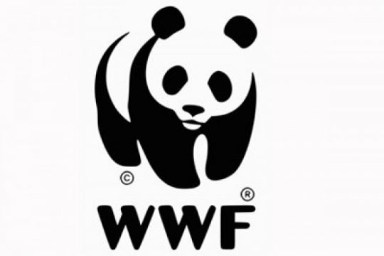 "Jakarta finalis ""We Love Cities"" WWF"