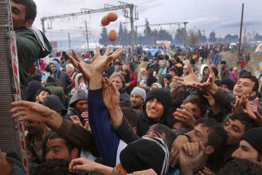 2.000 pengungsi dipindahkan dari kamp di perbatasan Yunani