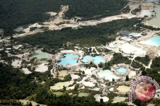 Babel akan pulihkan 18 hektare lahan eks tambang di Bukit Layang
