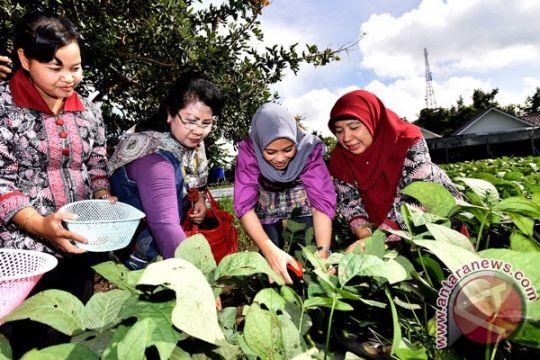 Kuota transmigran dari Bantul tertinggi se-Yogyakarta