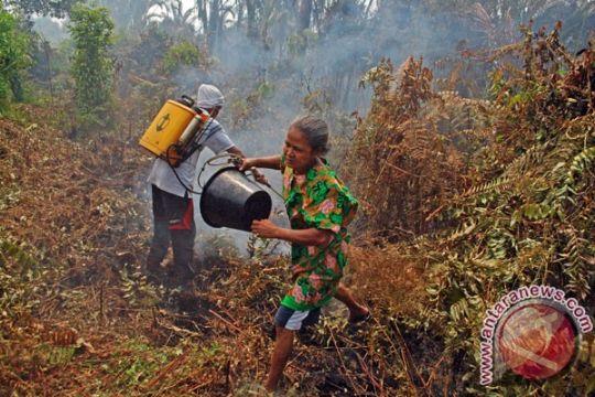 3.000 ha hutan Tolitoli terbakar dalam dua tahun terakhir