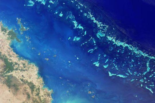 Pemanasan global bisa runtuhkan pertahanan alami Great Barrier Reef