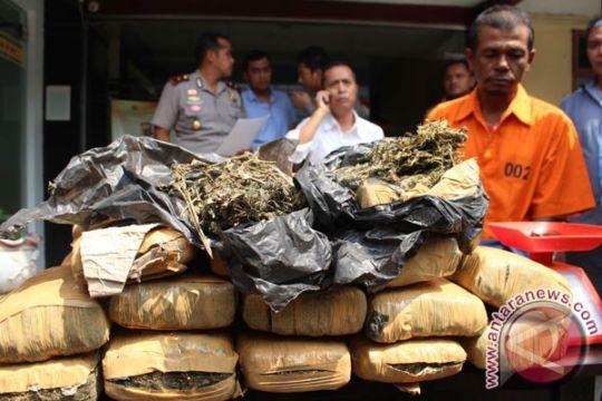 Polres Pasaman Barat tangkap pengguna narkoba