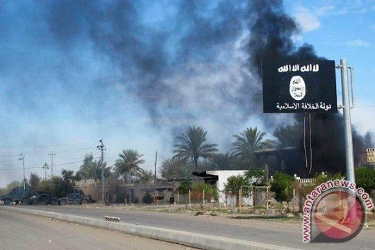 AS, negara Teluk jatuhkan sanksi terhadap individu terkait ISIS