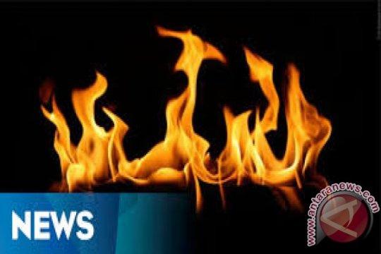 Politikus PKS: Harus ditindak tegas pembakaran poster Habib Rizieq